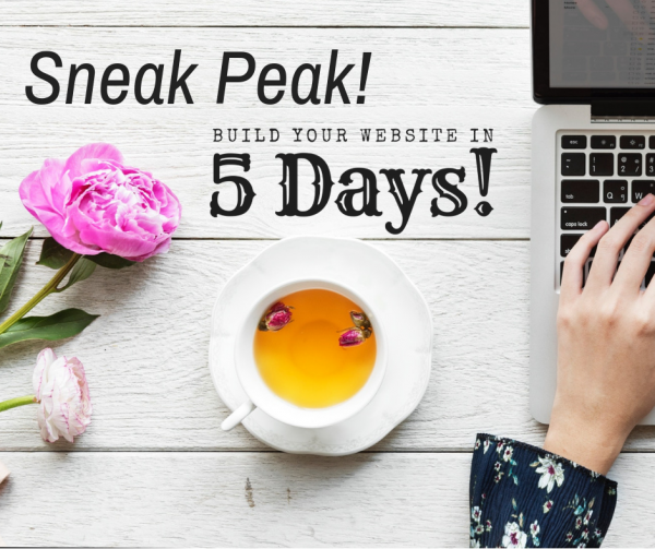 Build Your Website in 5 Days Sneak Peek ~ Another Cool Freebie from Web Designs by Teresa